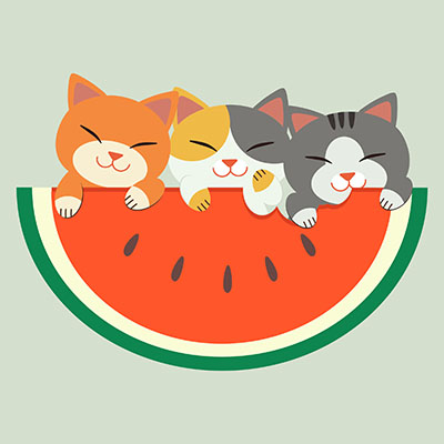 طرح لايه باز گربه هاي ملوس کارتوني هندوانه شيرين جشن ولنتاين گرافيکي تصويرسازي